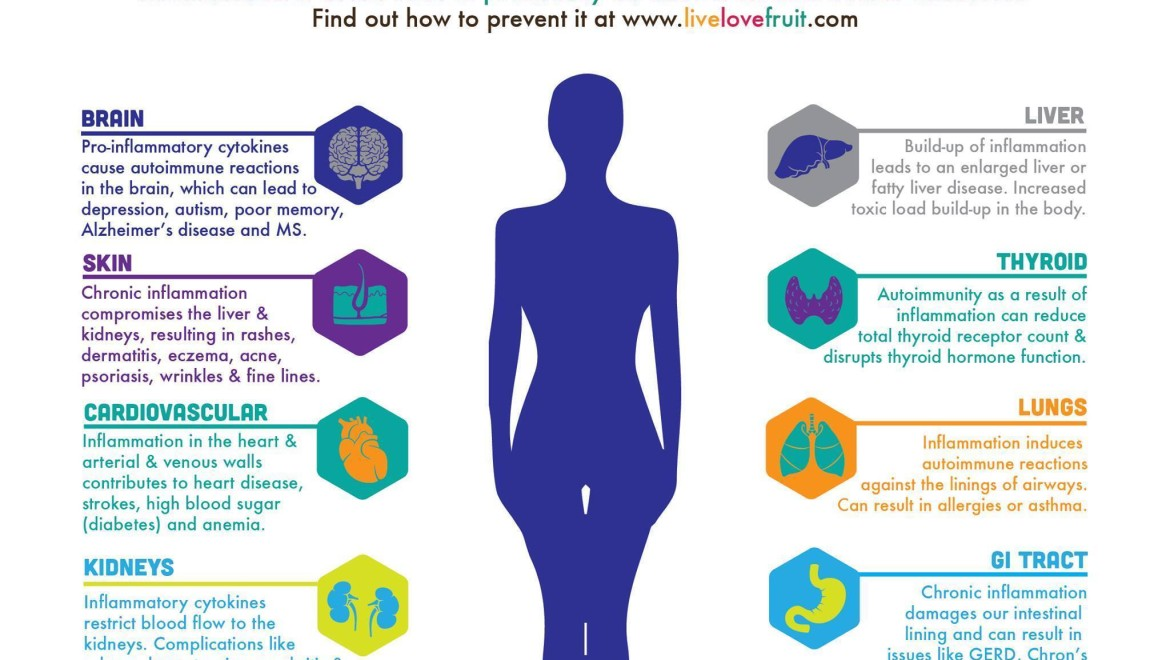 Inflammation and the Human Body